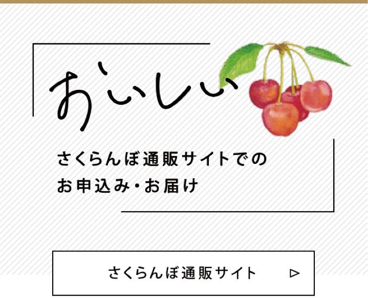 長野県さくらんぼ通販
